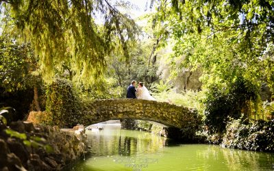 Boda de Antonio y Lucía en Sevilla