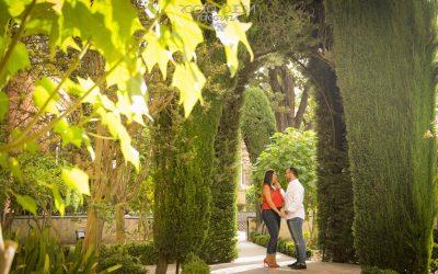 Preboda de Iván y Vicky en Sevilla